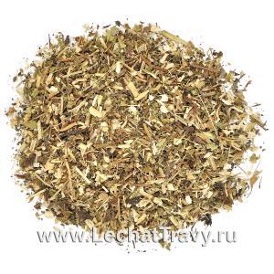 Эхинацея пурпурная (трава) (50г)
