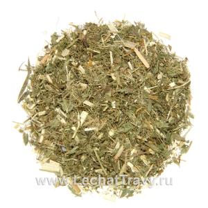 Галега лекарственная (козлятник) (трава) (50г)