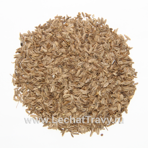 Фенхель обыкновенный (семена) (50г)