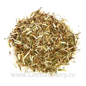 Цикорий обыкновенный (трава) (50г)