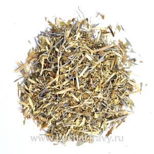 Синеголовник плосколистный (трава) (50г)