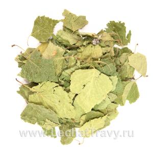 Берёза повислая (листья) (50г)