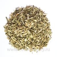 Болиголов пятнистый (трава) (50г)