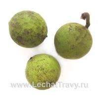 Чёрный орех (плоды) 10 шт
